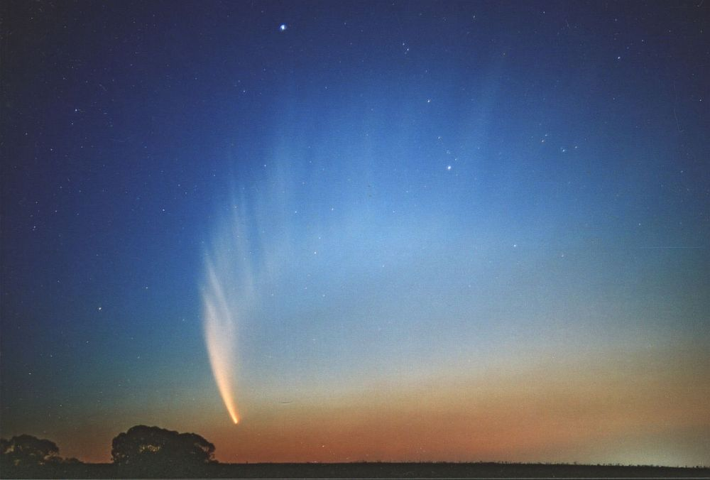 Comet McNaught on the 20th January 2007 from the Bathurst Observatory Research Facility